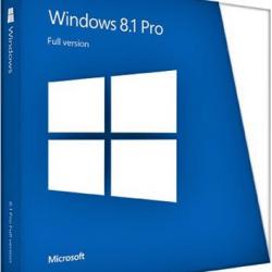 windows 8.1 professional (64bit)